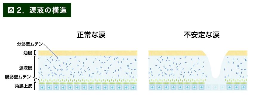 【画像】涙液の構造